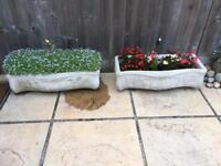 Pair of Matching Stone Planters