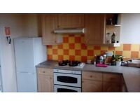 Double room in two bedroom flat to let