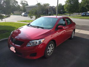 2010 Toyota Corolla/ ACCIDENT FREE, VERY LOW KM