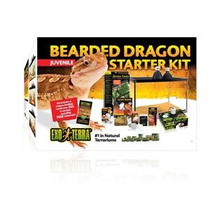 Juvenile Bearded Dragon Starter Kit - Brand New/Never Used!
