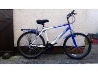 "Male's Mountain Bike: Apollo Blue & White, Good Condition, 20"" Frame & 18 Gears"
