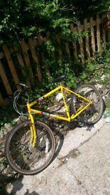 falcon cheetah - mountain bike