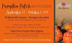 Pumpkin patch photo session
