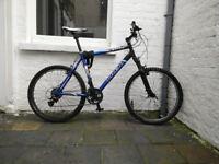 Big, blue Trek mountain bike