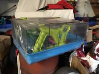 Large Multi Level Hamster Cage