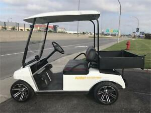 Voiturette de golf / Golf cart
