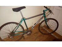 Raleigh m trax spares or repairs