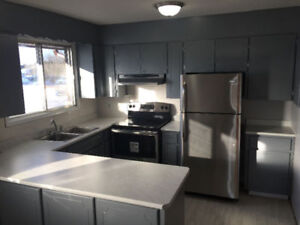 Roommate Wanted $560/month (Everything Included)