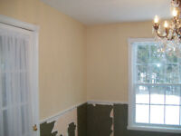 Experienced painter who loves to paint...