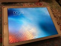 iPad Pro 10.5 4G