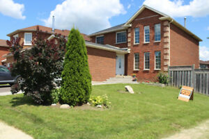 Newly renovated detached home in Scarborough, ON
