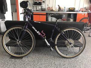 Giant Butte Mountain Bike