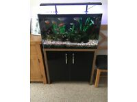 Fishtank & cabinet for sale includes heaters, filters and decs