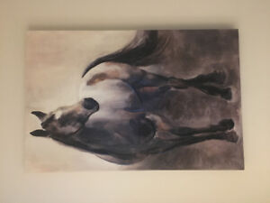 Horse Photo(Canvas)
