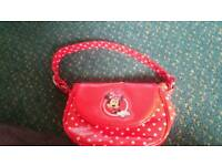 Minnie mouse bag and case
