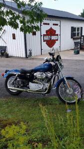 Harley Sportster 883 XL