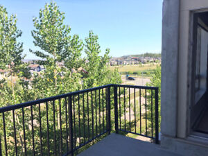 Looking for Renter - Summits Eagle Ridge