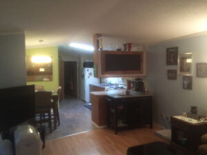 Mobile home for sale - south of town
