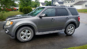 2010 Ford Escape Limited (AWD, V6, Leather)