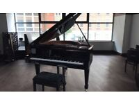 Lippmann Piano For Sale - Excellent price