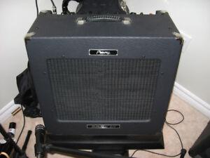 Peavey Delta Blues 210 Tube Amp