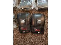 Boxing/martial arts bag gloves