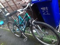 Apollo bike for sale £40 Ono