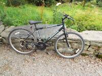 Probike Black Knight Boys Mountain Bike