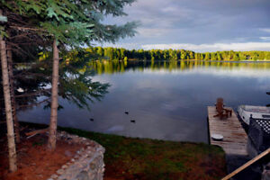 Enjoy Spectacular Fall Colours in Private  Cottage
