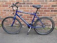 raliegh mountain bike