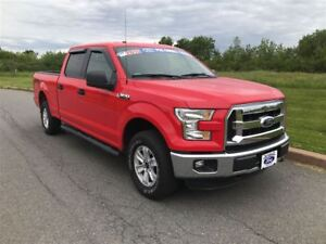 2015 Ford F-150 XLT|ONE OWNER WE SOLD AND SERVICED|