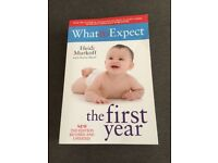 What to Expect The 1st Year