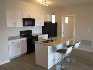 Furnished Executive 1 Bedroom w/Suite Laundry~ Fort Sask