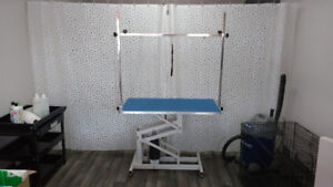 """R. Roover 42 """"x 24"""" hydraulic grooming table"""