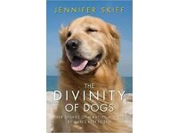 BARGAIN: The Divinity of Dogs
