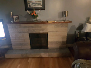 Fire place , electric .  $200 obo