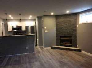 Brand New Beautiful Basement Suite Located in College Heights