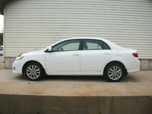 2009 Toyota Corolla LE WITH ALLOY WHEELS AND SUNROOF