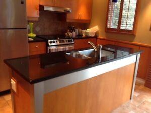 Magnifique comptoirs de granite (lavabo et robinet inclus)
