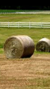 Good quality  round bales wanted