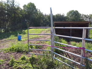 Round pen with walk threw gate
