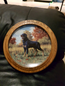 Rottweiler collector plate and wooden frame