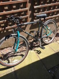 Man's mountain bike in good condition