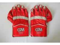 Wicket Keeper Pads and Gloves