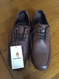 BRAND NEW Mens Hush Puppies Brown Shoes Size 6