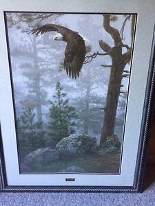 """""""Shrouded Forest"""" by Daniel Smith Framed Picture"""