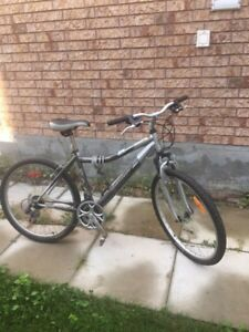 Mountain Bikes for a new owner(s)