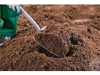 Grade A Topsoil