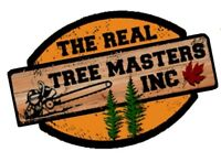 WANTED: Arborist Tree Climber. $35 Per Hour