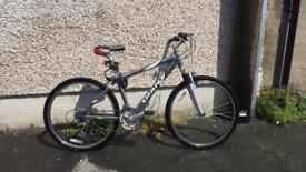 Giant mountain bike silver (unisex)